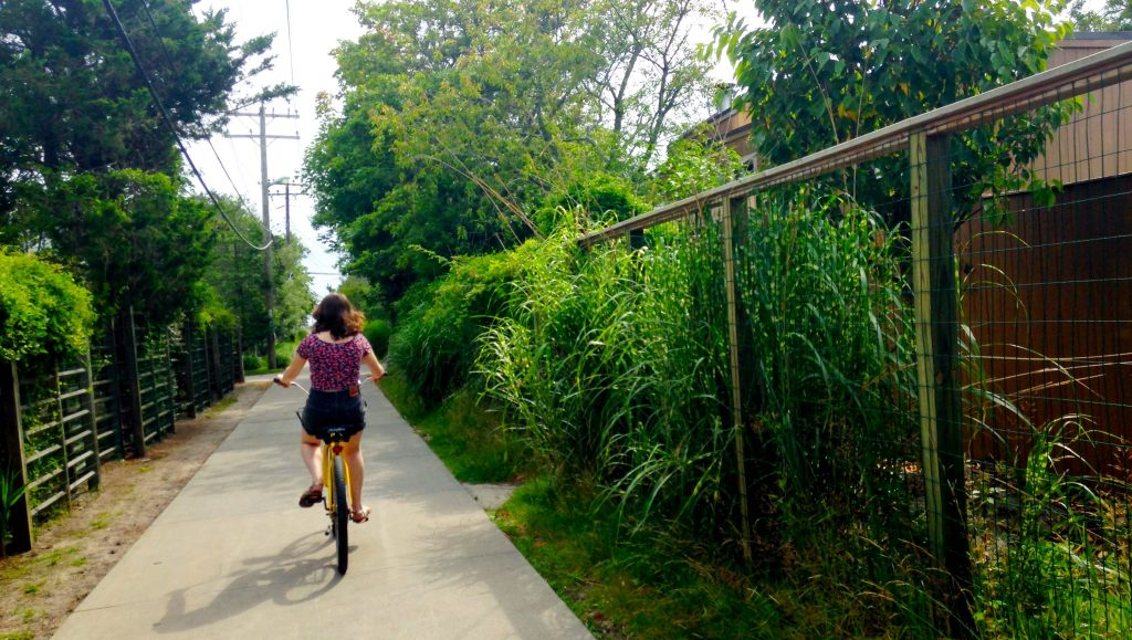 Biking on Fire Island