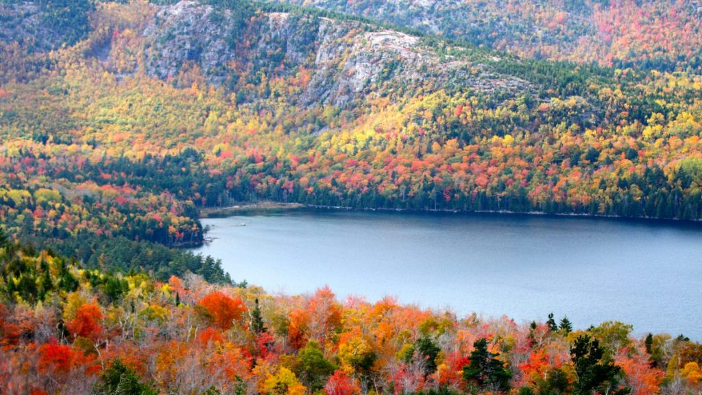 acadia fall lake view