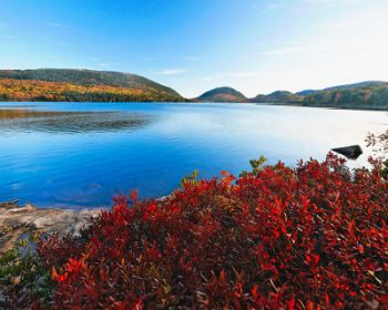 lake view fall acadia