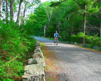 carriage road biking acadia
