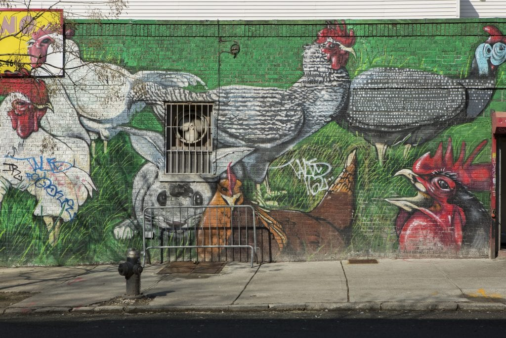 street art in Bushwick of chickens