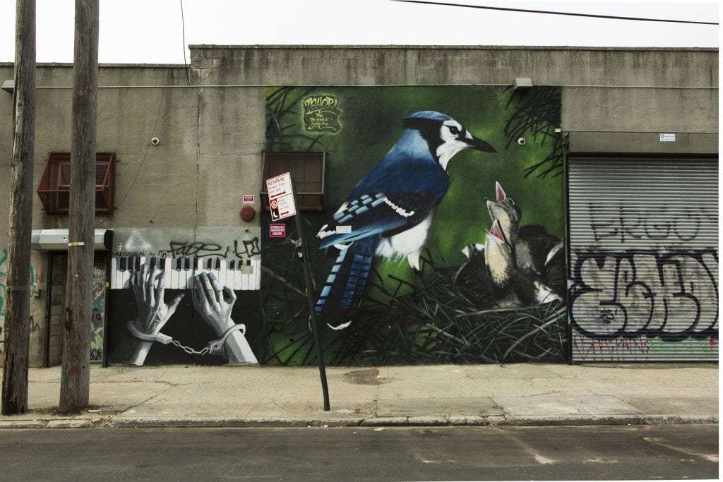 the bushwick collective street art blue jay mural