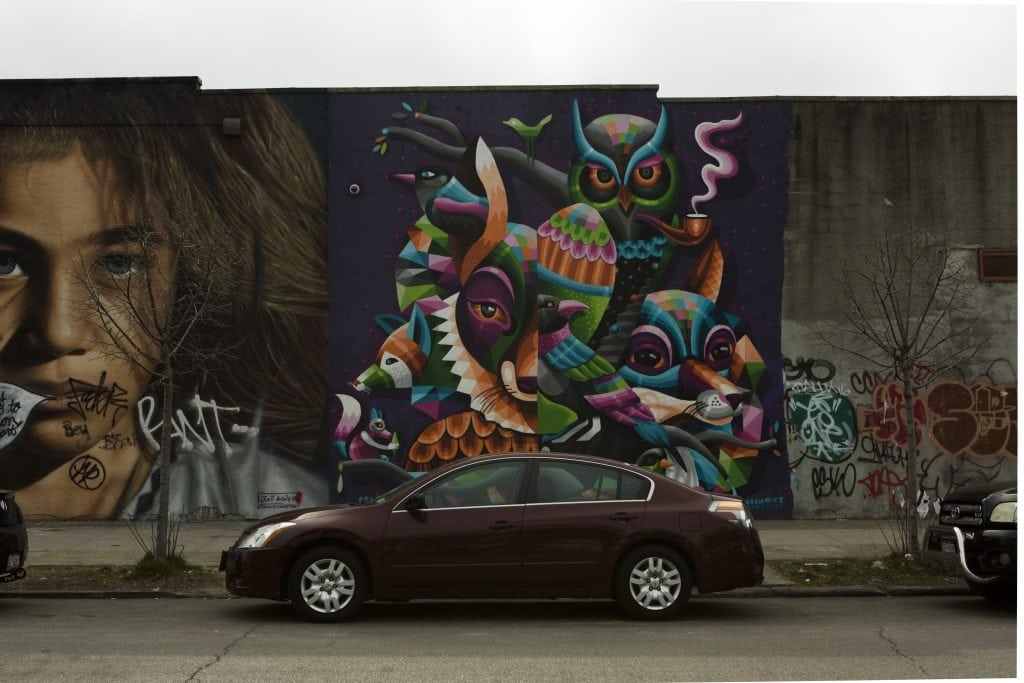 the bushwick collective street art animals