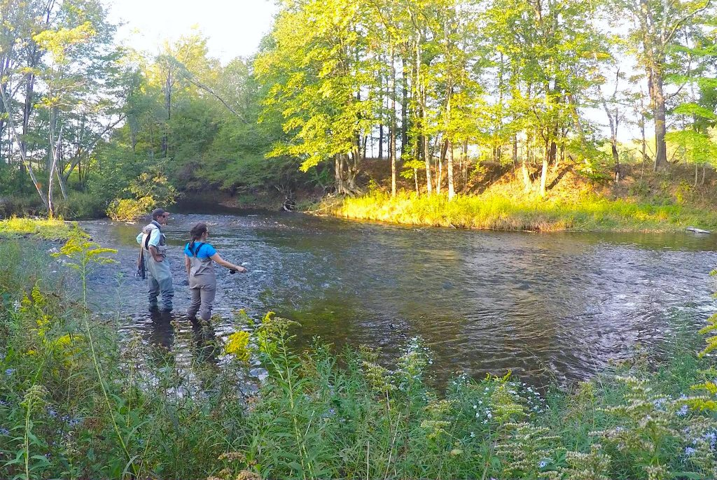 Fly Fishing 101