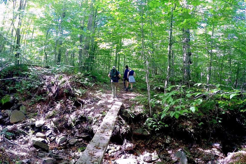 Freestone Hiking catskills