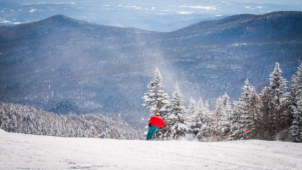 stowe skier