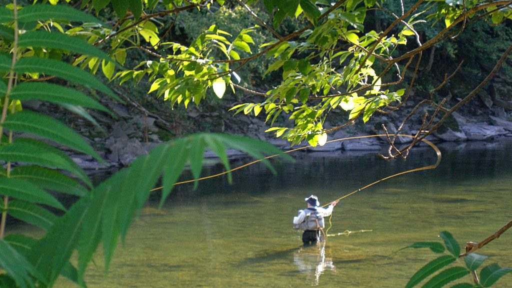 fly fishing in esopus creek