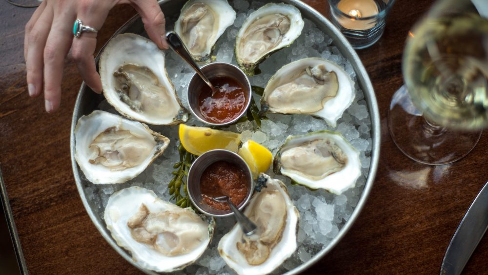 Camden Maine Oysters