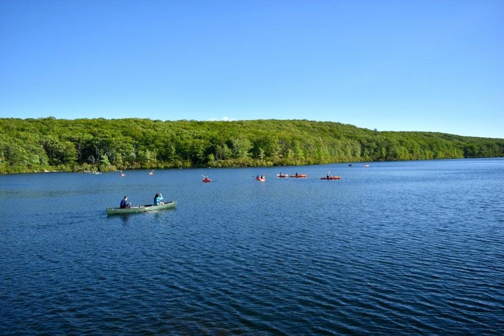 harriman paddling