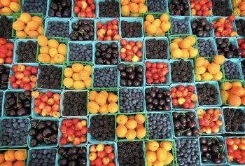 fresh blueberries and cherries
