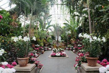 long island arboretum