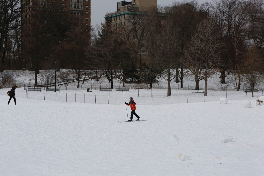 Cross Country Ski Prospect Park