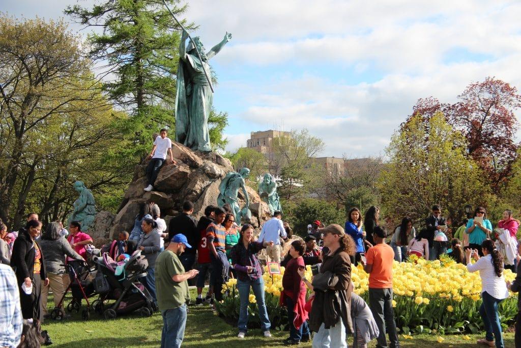 Albany Tulip Fest