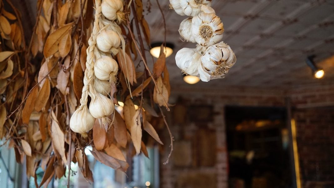 Garlic Festivals Near NYC