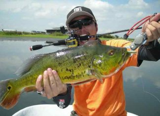 Best Bass Fishing Lakes in New York