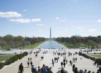 Washington DC guide