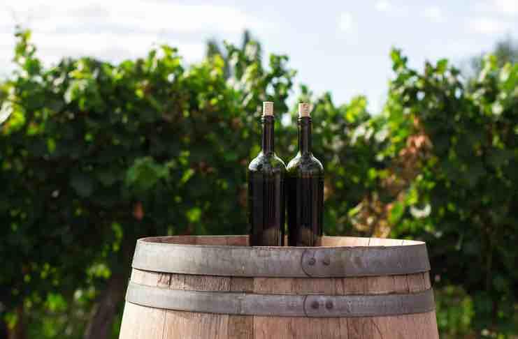 preserve your wine