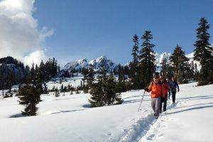 Finding Powder at Mt. Baker