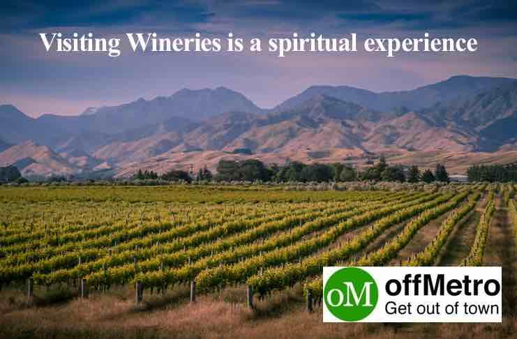 new zealand wine tours