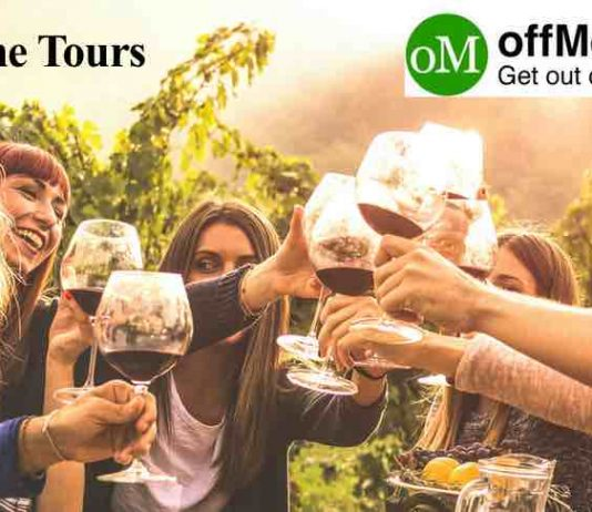 wine tours in new zealand